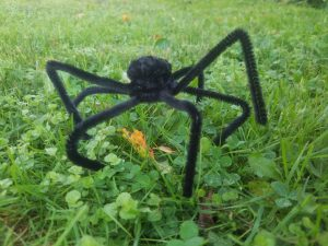 pipe cleaner spider tutorial