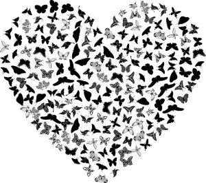 heart butterflies