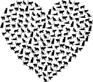 heart cats and kittens