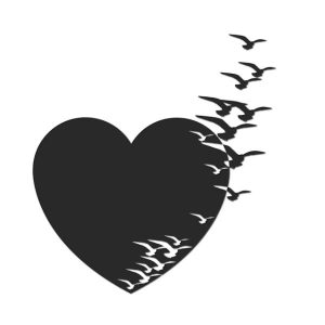 heart love birds