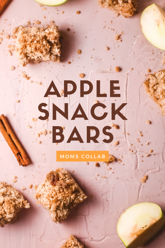 Apple Snack Bars